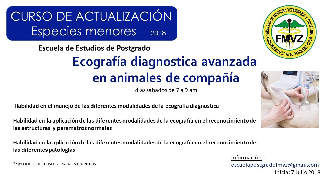 Ecografía diagnostica avanzada en animales de compañía