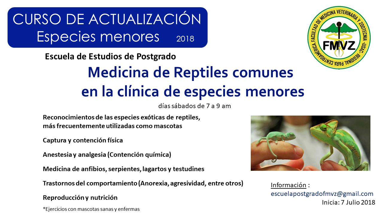 Medicina Reptiles EEP FMVZ