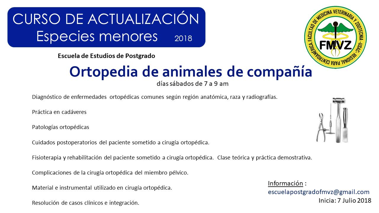Ortopedia de Animales de Compañía